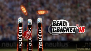 Download Real Cricket 18 APK for Android/iOS 5