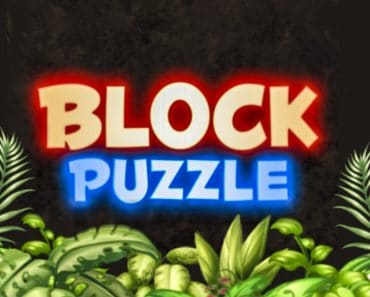 Download Block Puzzle Bricks - For Android 8